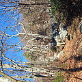 Old Rag Hiking Trail - 121246 by DC Photographer