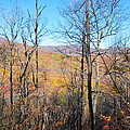 Old Rag Hiking Trail - 12128 by DC Photographer