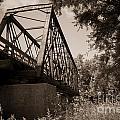 Old Rail Bridge by M Dale