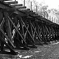 Old Rail Trestle by Andrew Romer