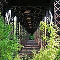 Old Railroad Car Bridge by Sherman Perry