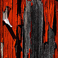 Old Red Barn Two 2 by Bob Orsillo