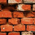 Old Red Brick Wall by Jolanta Meskauskiene