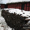Old Red Farm by Susanne Baumann