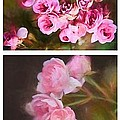 Old Roses Vertical by Alice Gipson