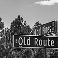 Old Route 66 And Cool Pines by Angus Hooper Iii