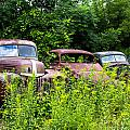 Old Rusty Cars by Sherman Perry