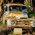 Old Rusty International Flatbed Truck by Steve G Bisig