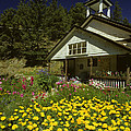 Old Schoolhouse And Garden. by George Tuffy