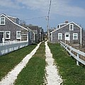 Old 'sconset Nantucket Houses by Susan Wyman