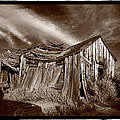 Old Shack Bodie Ghost Town by Steve Gadomski