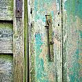 Old shed door by Tom Gowanlock