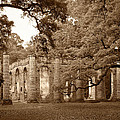 Old Sheldon Church - Sepia by Harold Rau