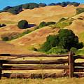 Old Split Rail Fence by Michael Pickett