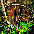 Old Spokes by John Anderson