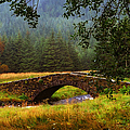 Old Stone Bridge Over Kinglas River. Scotland by Jenny Rainbow