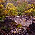 Old Stone Bridge. Scotland by Jenny Rainbow