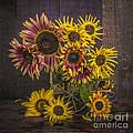 Old Sunflowers by Edward Fielding