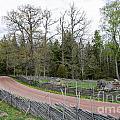 Old Time Gravel Road by Kennerth and Birgitta Kullman