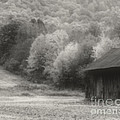 Old Tobacco Barn In Black And White by Smilin Eyes  Treasures