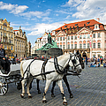 Old Town Square And Horse-drawn Carriage In Beautiful Prague by Matthias Hauser