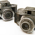 Old Toy Cameras by Amy Cicconi