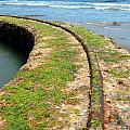 Old Tracks By The Ocean by Henrik Lehnerer