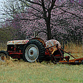 Old Tractor And Redbuds by Jill Westbrook
