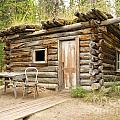 Old Traditional Log Cabin Rotting In Yukon Taiga by Stephan Pietzko