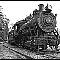 Old Trains by Alice Gipson