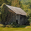 Old Vermont Barn by Donna Doherty