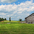 Old Virginia Barn by Dave Mills