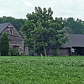 Old Virginia Barns by Susan Wyman
