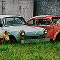Old Volks Home by Trever Miller