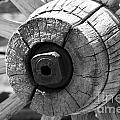 Old Wagon Wheel - Black And White by Michael R Erwine