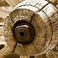 Old Wagon Wheel - Sepia Rendering by Michael R Erwine
