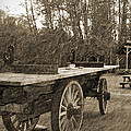 Old Wagon With Antique Water Wheel by Tina Wentworth