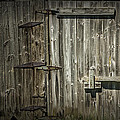 Old Weathered Barn Door by Randall Nyhof