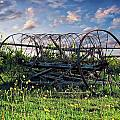 Old Weathered Plow by Anthony Dezenzio