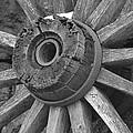 Old Wheel by Trish Tritz