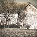 Old White Barn by Connie Dye