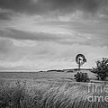 Old Windmill Bw by Michael Ver Sprill