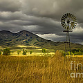 Old Windmill by Robert Bales