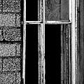 Old Window 2  by Tara Lynn
