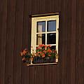 Old Window by Aged Pixel
