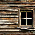 Old Window And Clapboard by Olivier Le Queinec