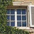 Old Window With Creeper. by Jaroslav Frank