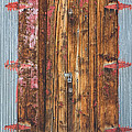 Old Wood Door With Six Red Hinges by James BO  Insogna