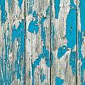 Old Wood by Tom Gowanlock