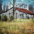 Old Wooden Barn by Betty LaRue